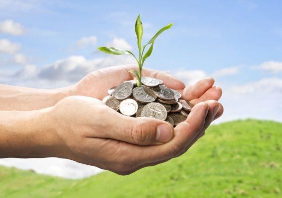 finance_tree_growth_45EA7BC7B6870
